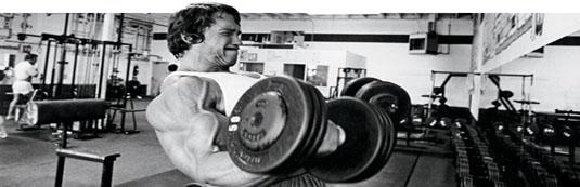 Desatero svalového růstu